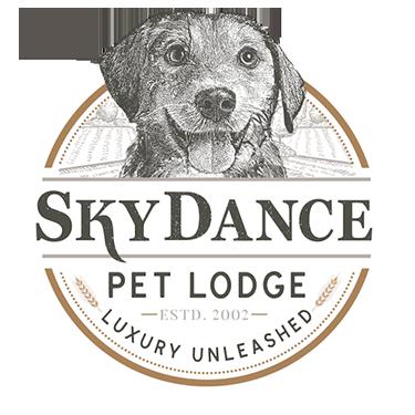 Skydance_logo
